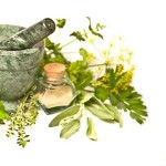 Produk Herbal dan Organik Tembus Pasar Eropa
