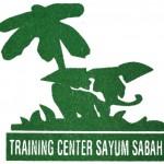 Logo-TCSS
