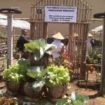 Setum Resmi Menjadi Pasar Sayuran Organik