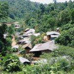 """Perempuan Bersyukur Adanya Hutan Desa, """"Lanang Kami Tidak Pergi Merantau"""""""