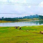 4 Desa Wisata Indonesia Masuk 100 Besar Destinasi Berkelanjutan Dunia